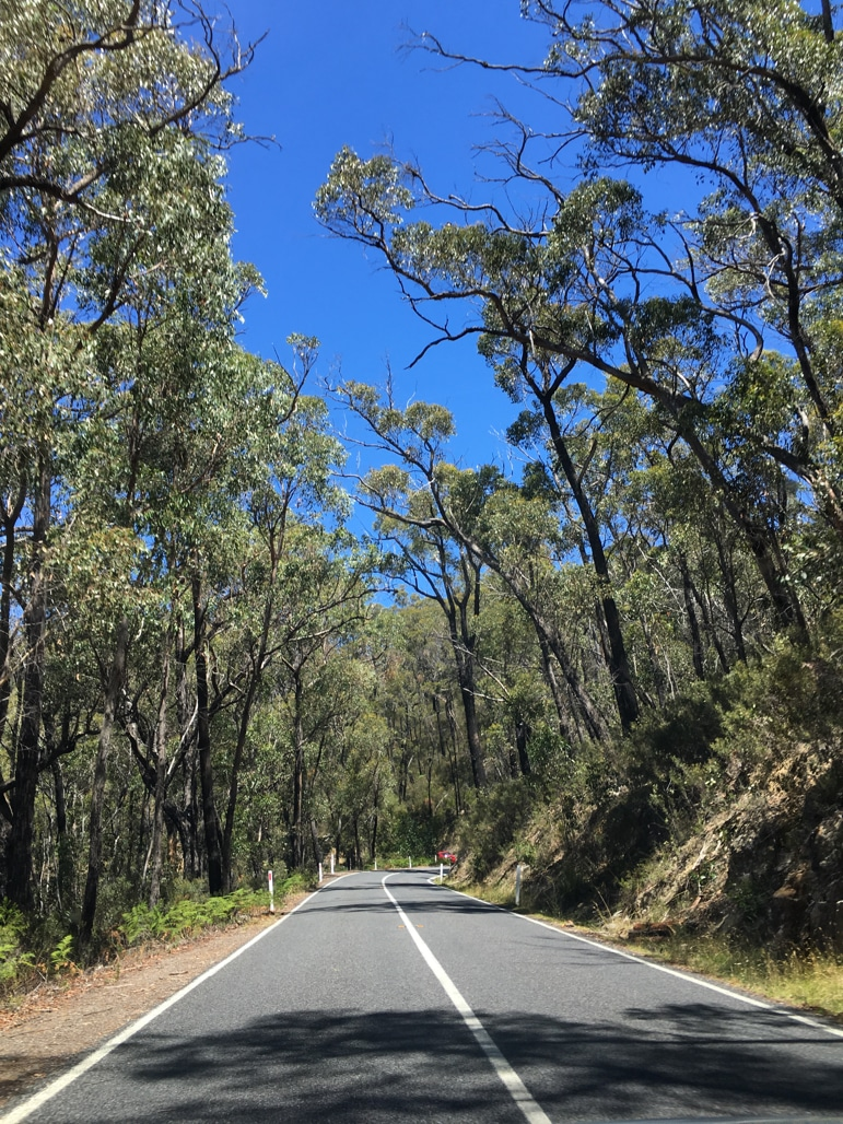 Driving through The Grampians National Park