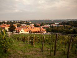 Holiday choice increases as Zlatá Praha and Muthu joins the RCI resorts network