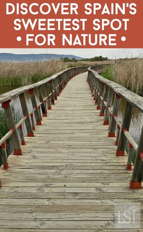 Spain's sweetest spot for nature lovers, Tablas de Daimiel in La Mancha
