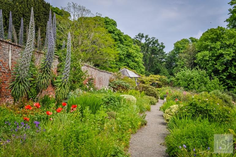 The walled garden at Beaulieu House