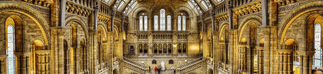 Things to do in west London - the Natural History Museum