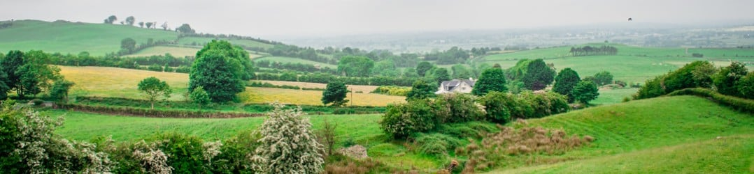 Discovering my Irish heritage among the lush countrside in Irleand's Ancient East