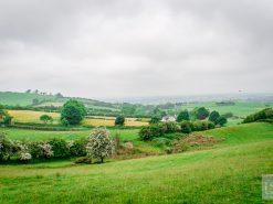 Delving into my Irish heritage in Ireland's Ancient East