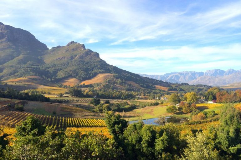 Tales of Stellenbosch wineries from land to bottle