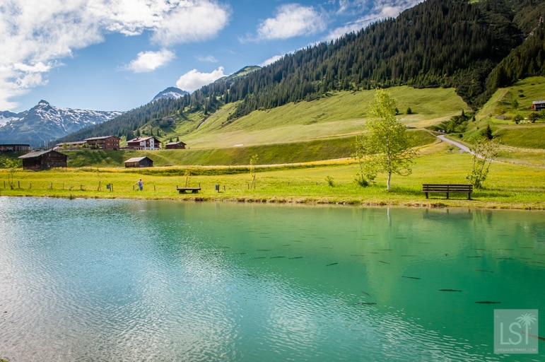 The fish farm in Zug