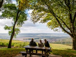 Why the Champagne region, France, gives us a taste for more than a bottle of bubbly