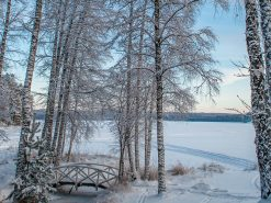 Win a holiday to Lapland or northern Finland, plus £1,000 spending money