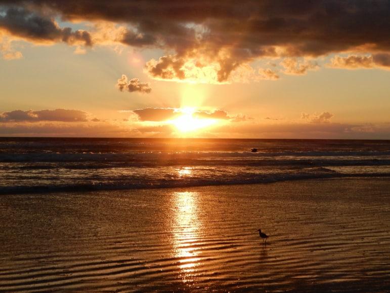 Firey sunrise brings light to the best Daytona Beach attractions