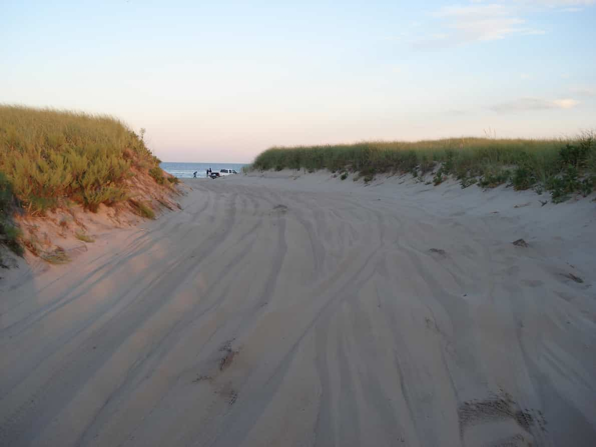 Hitting the dunes in Cape Cod | pic William DeSousa Mauk