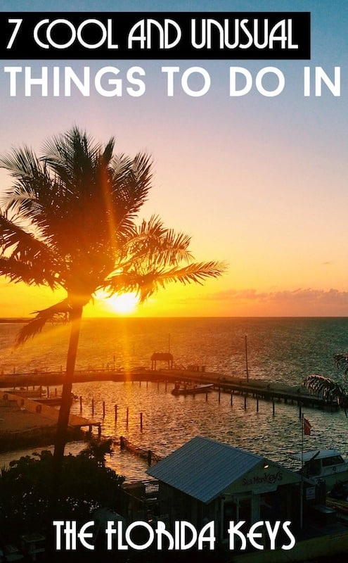 7 cool and unusual things to do in the Florida Keys and Key West, USA