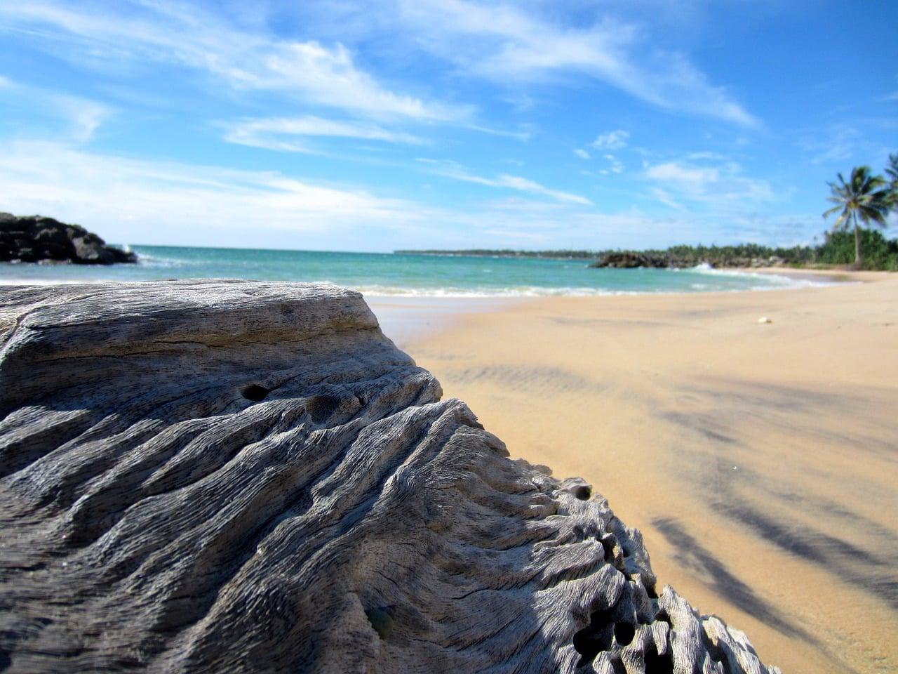 Where to go on holiday - Sri Lanka
