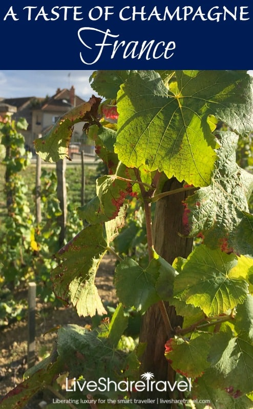 A taste of the Champagne region of France - from Bollinger to Michelin-starred restaurants