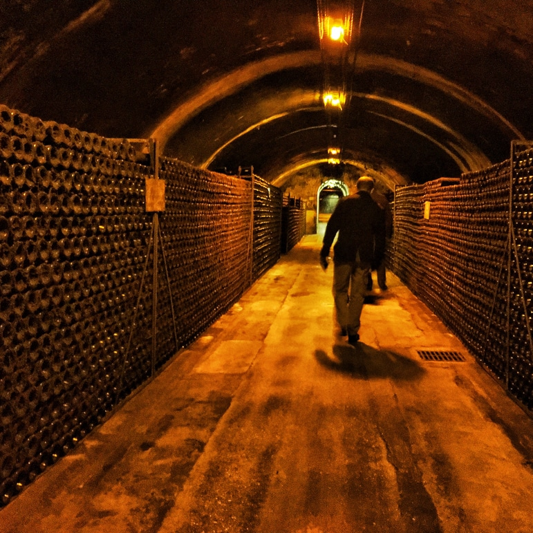 The stellar cellars of Bollinger in the Champagne region France