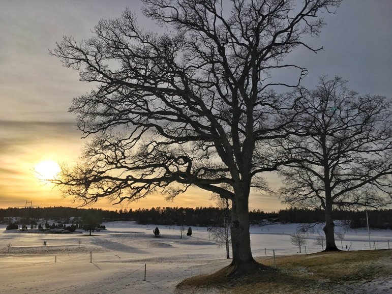 Kultaranta Resort golf course in winter