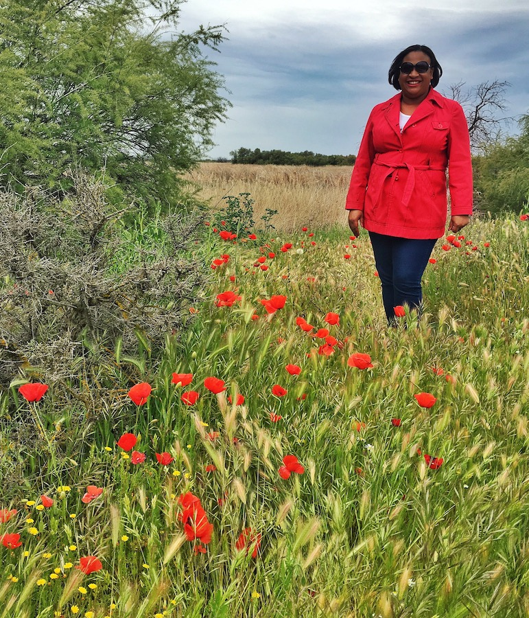 Spain in my heart, mind and spirit - among the poppies of Spain's countryside