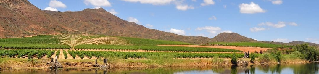 Sample the Robertson Wine Valley, in South Africa