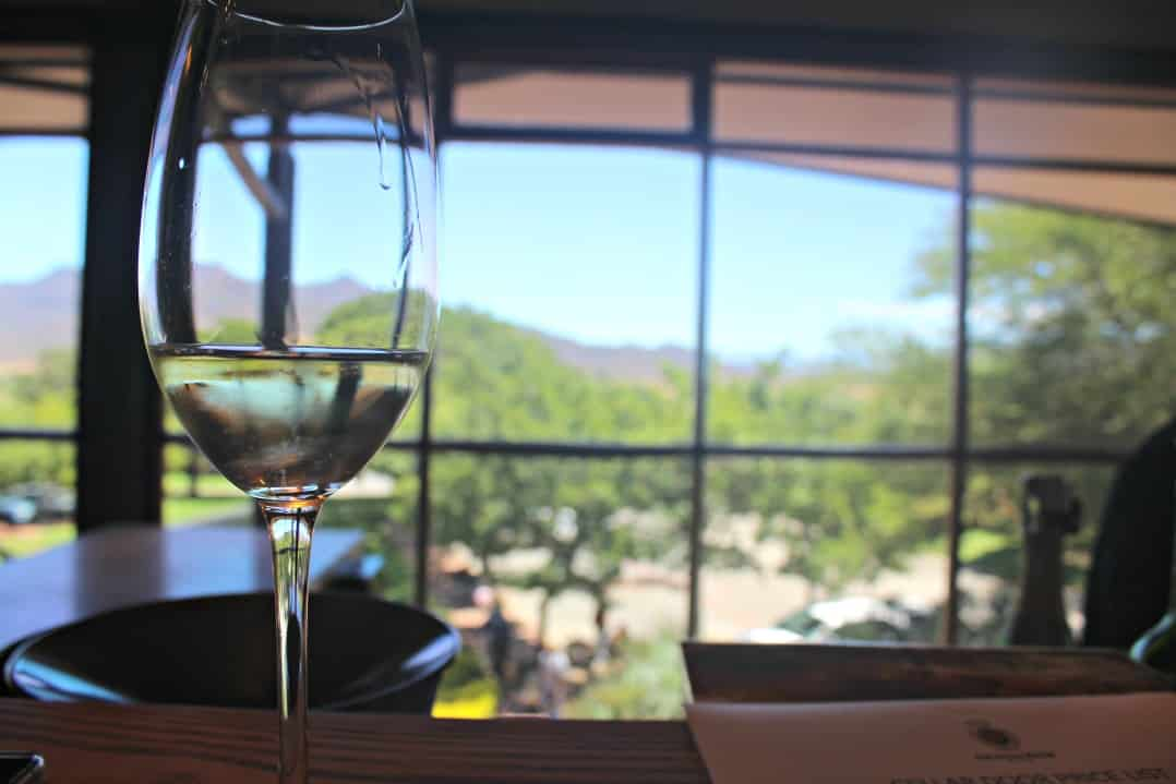 Drinking in South African wines in the Robertson Wine Valley