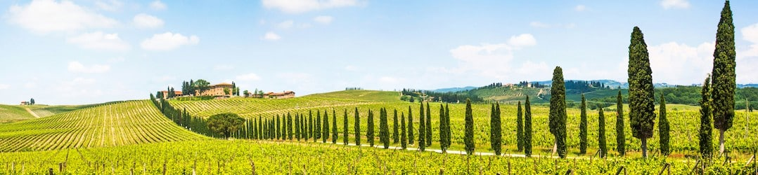 Wine destinations to travel to around the world - Tuscany