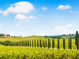7 of the best destinations for wine lovers