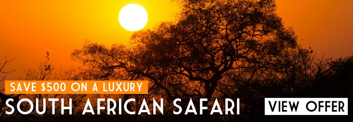 Luxury holiday offers to South Africa