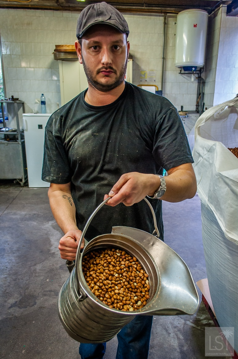 Fabien collects the peanuts ready for cooking