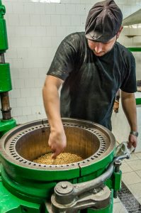 Fabian hard at work producing pure virgin oil, at Huilerie Beaujolaise
