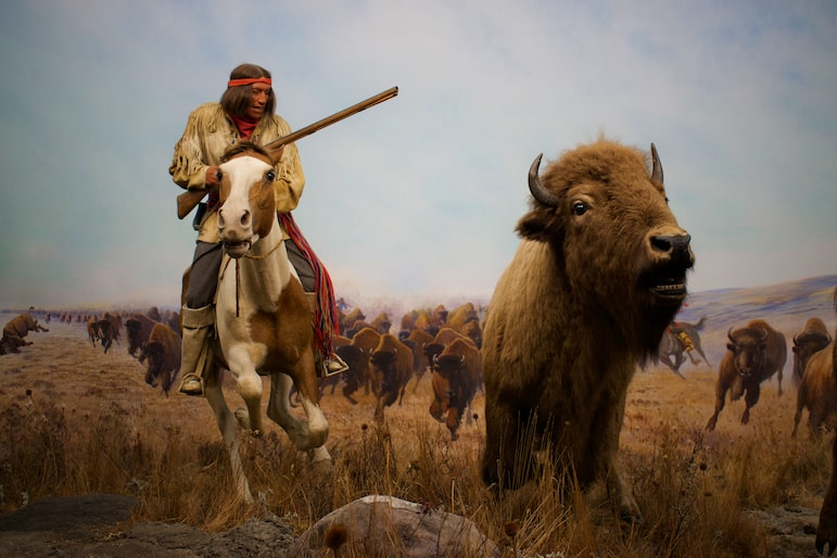 This artwork in the Museum of Manitoba, depicts the culture of the Metis who would hunt buffalo and trade their fur