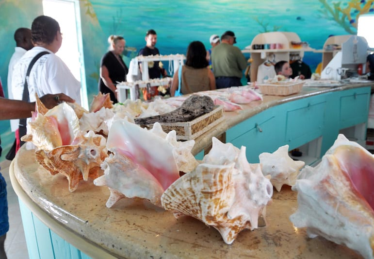 Visit a conch farm in Grand Turk to learn about their famous export | Pic James Willamor