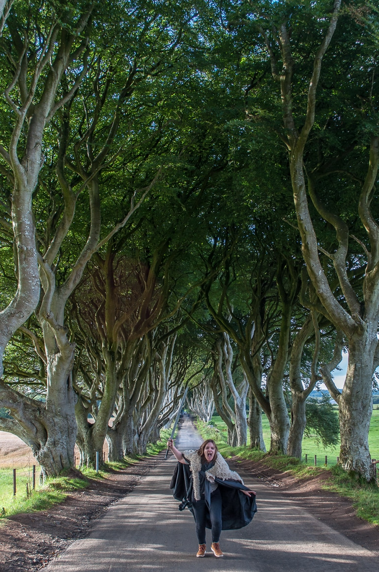 Get your Game of Thrones on in the Dark Hedges, near Belfast