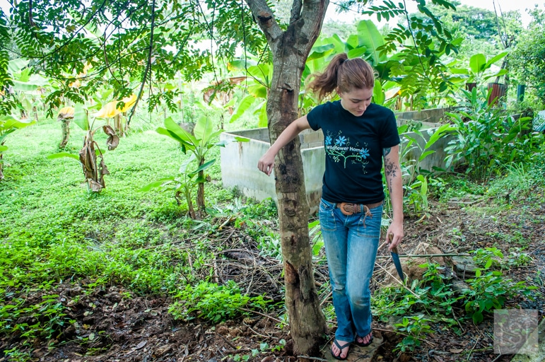 International volunteers help to farm the land at Wildflower Home