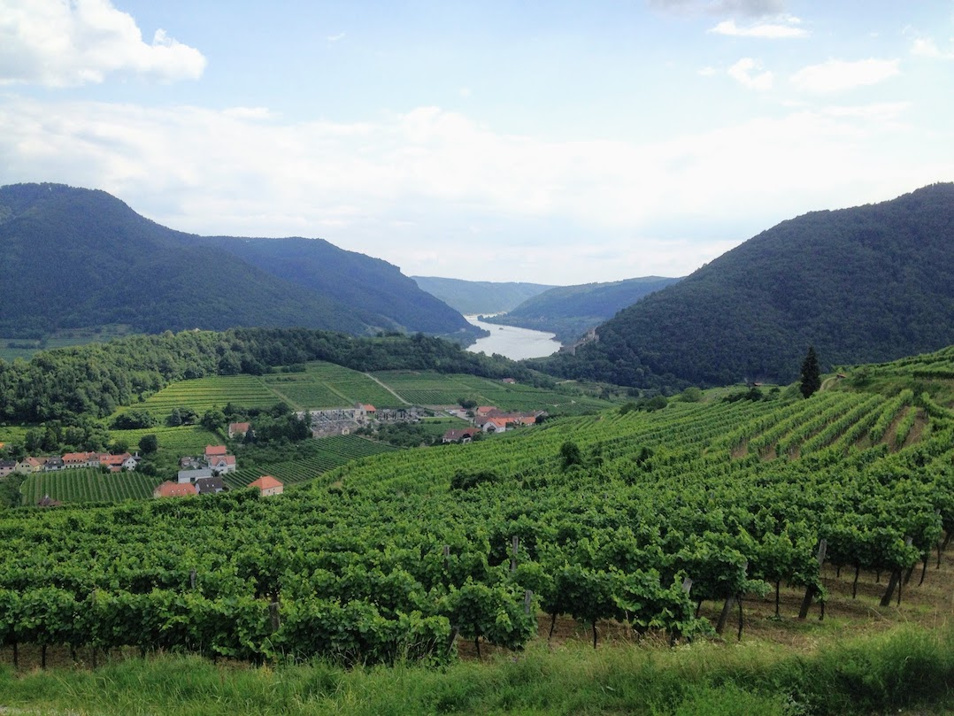 Things to do in Austria - visit Lower Austria's Wachau Valley for wine and Danube cruises
