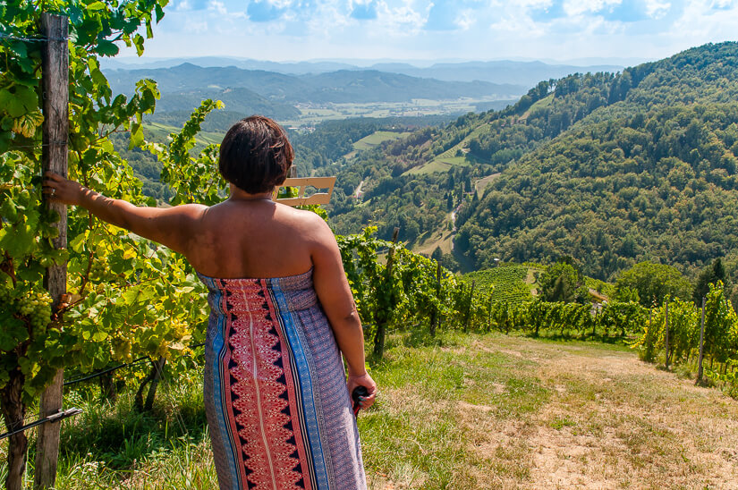 Taking in the vineyard views in South Styria