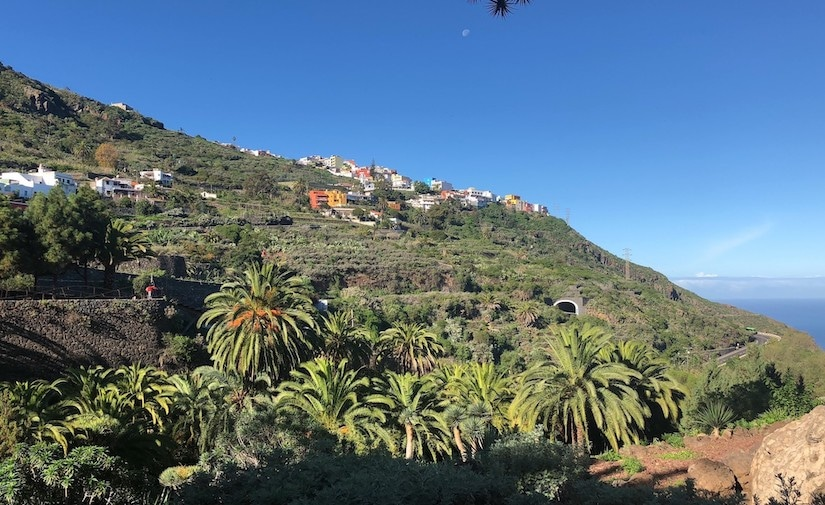 View of Icod de los Vinos, Tenerife