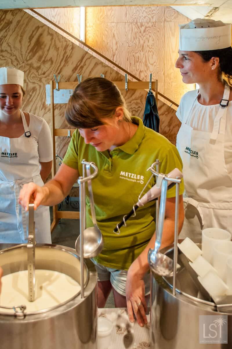 Cheese making at Metzler Dairy