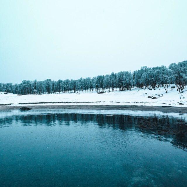 Norwegian shoreline