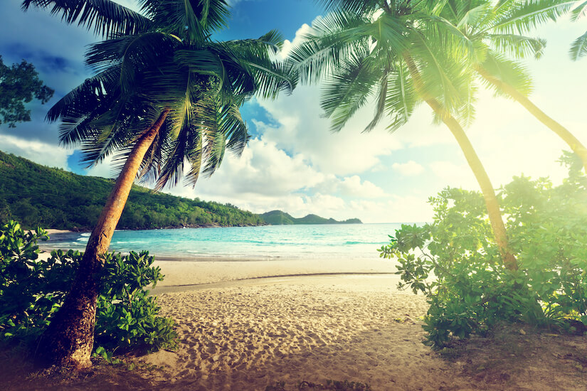 Tropical vacation with RCI cruise
